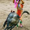 Bullfight 070410 263