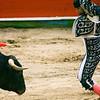 Bullfight 070410 087
