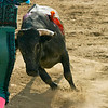 Bullfight 070410 146 Nrm