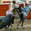 Bullfight 070410 212
