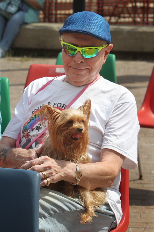 . Saturday at Lowell Folk Festival. Arthur McCann of Lowell with his Yorkshire terrier, Nikki, at JFK Plaza. (SUN/Julia Malakie)