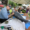 Saturday at Lowell Folk Festival. Fish taxidermist Rick Krane of Hinsdale, N.H., paints a King Salmon with acrylic paint at Lucy Larcom Park. (SUN/Julia Malakie)
