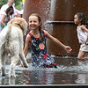 Saturday at Lowell Folk Festival. Farah Gonzalez, 7, of Lowell, meets a wheaten terrier named Ginger, cooling off in the Enterprise Bank fountain. (SUN/Julia Malakie)