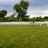 Ruth's Wedding Venue (131)