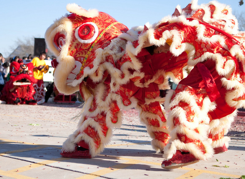 Chinese new year, the year of the tiger!