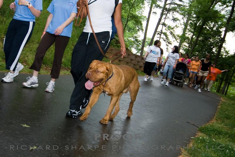 Richard Sharpe Photography_LFA Walk_056