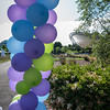 Walk for Lupus Now-87