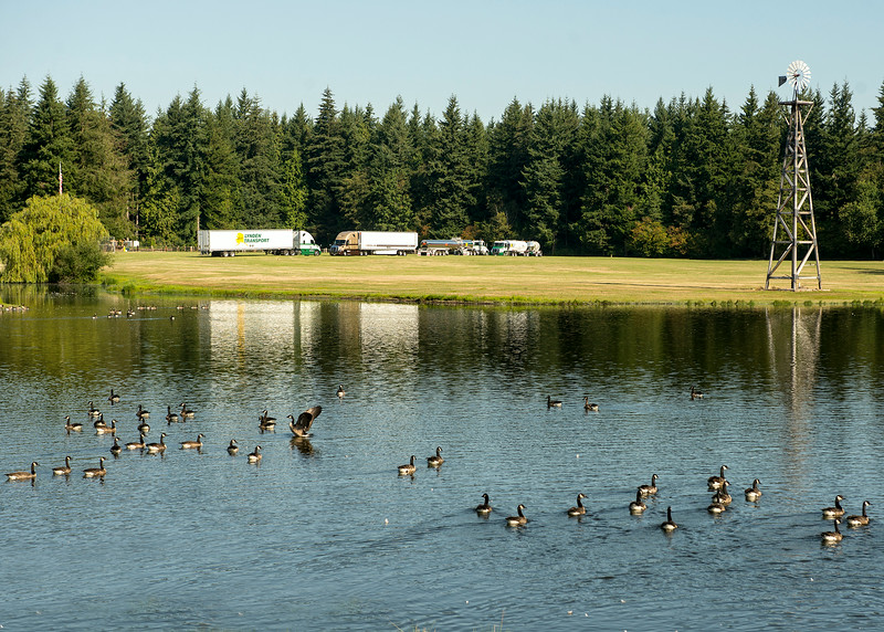 The picnic grounds from across the pond