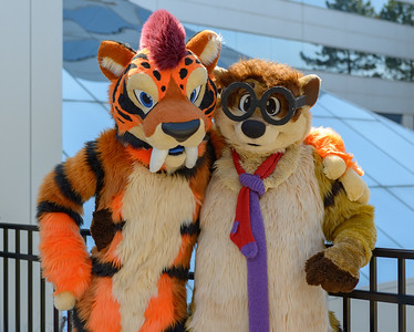 Motor City Furry Con 2017