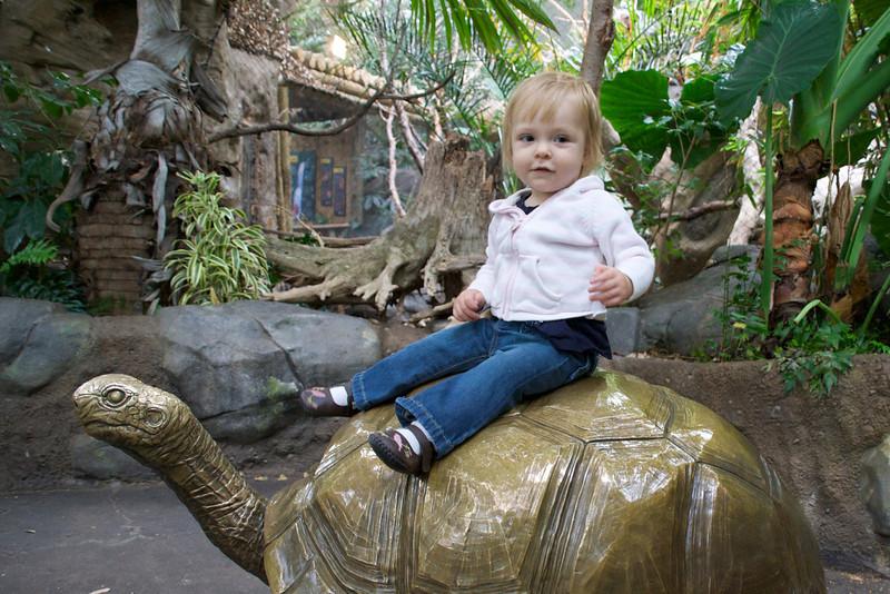Eve riding a giant tortoise