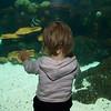 Eve admiring the fish