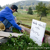 Foto: Dan Porcutan / servusphoto.smugmug.com