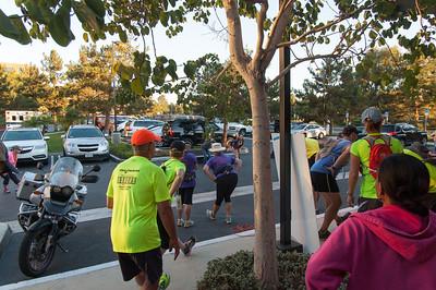 Challenge Walk MS 2013