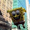 Spongebob, 2011