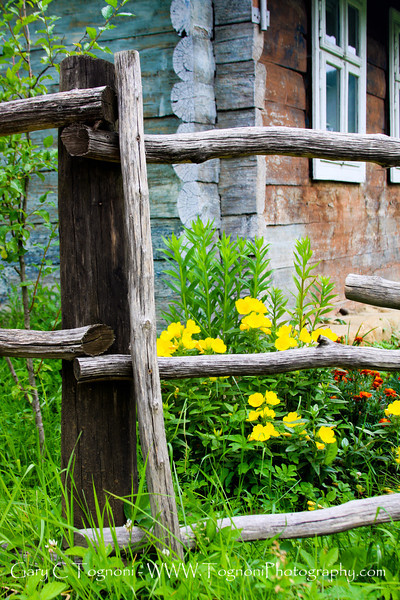 """Beyond the Fence"" I couldn't rsist these flowers and old cabin in the mountains above Kolomyia, Ukraine."