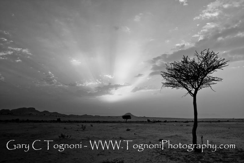 """Desert Solitude"" I captured this mage outside Madina Saudi Arabia."
