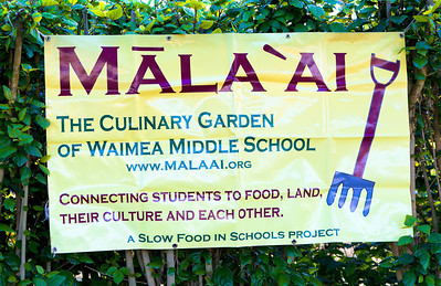 Mala'ai Celebrity Chef Tour