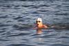 082711e-RDE-Storm Fort_swim-8222