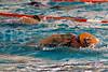 041711e-RDE-UT-swim-9480