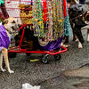 Krewe of Barkus Parade 02 23 2014-711