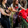 Krewe of Barkus Parade 02 23 2014-589