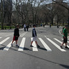 Central Park-8