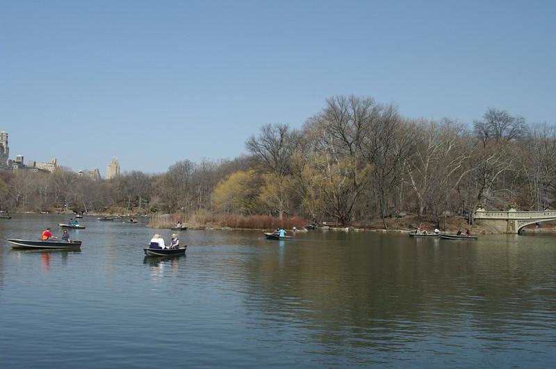 Central Park-21