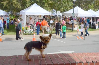 Dakota's dog-eye view of the Matthews Art Fair in Matthews Station, Sept. 29, 2013