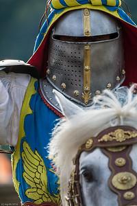 Gegner im Visier / Opponent in the visor