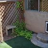 The Grande Dog Entrance