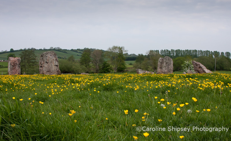 The Stone Circle at Stanton Drew, about 300yds from the pub and the final 'venue' for dancing.
