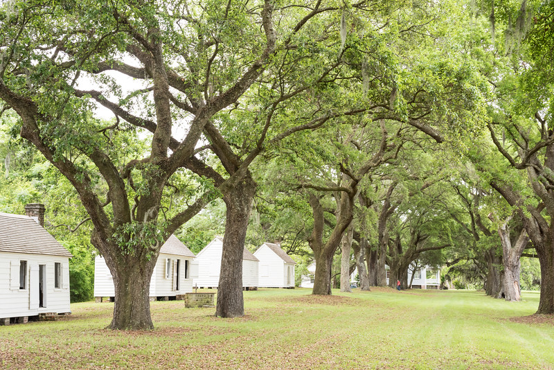 Slave cabins, now renamed Transition Row