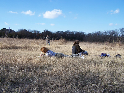 Meadow Preserve - Nature Journaling - 12/14/2008