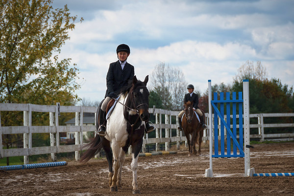 Meadowview Horse Show