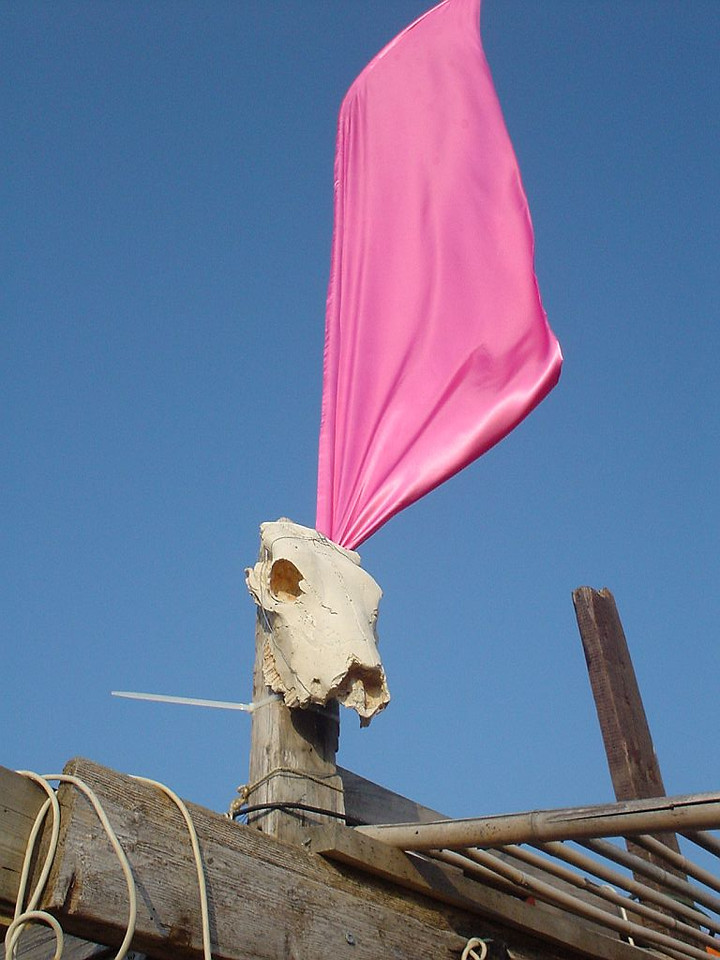 "PINK flag adorning <a href=""http://www.meccabeach.nl/"">Mecca</a>'s skull"