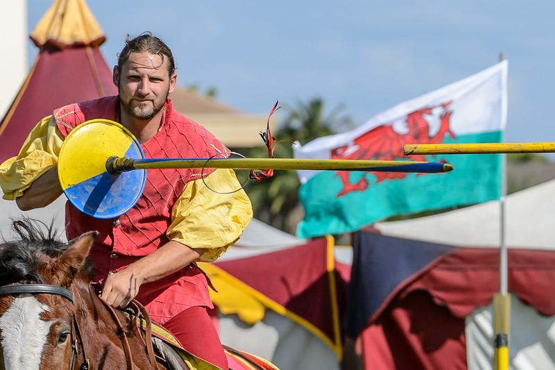 Medieval Faire 2013