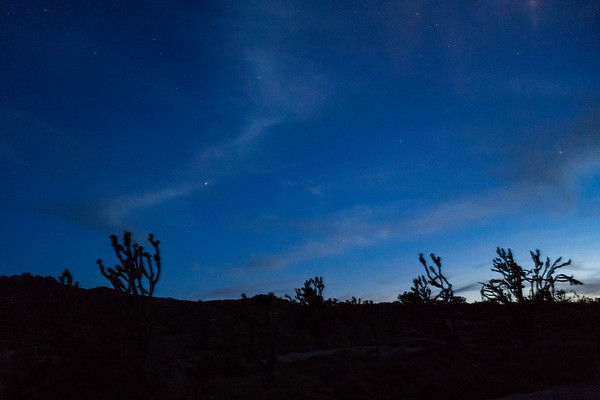 Astrophotography in the Mojave National Forest