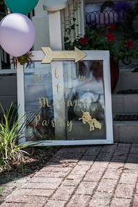 Meghan Bridal Shower-5.jpg