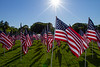 05-23-2015-Hoopes-Park-Flags-3732