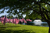 05-23-2015-Hoopes-Park-Flags-3794