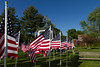 05-23-2015-Hoopes-Park-Flags-3752