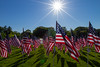 05-23-2015-Hoopes-Park-Flags-3733