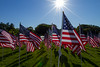 05-23-2015-Hoopes-Park-Flags-3729