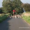 Hound Exercise 22nd August 2007 Mendip Farmers Hunt