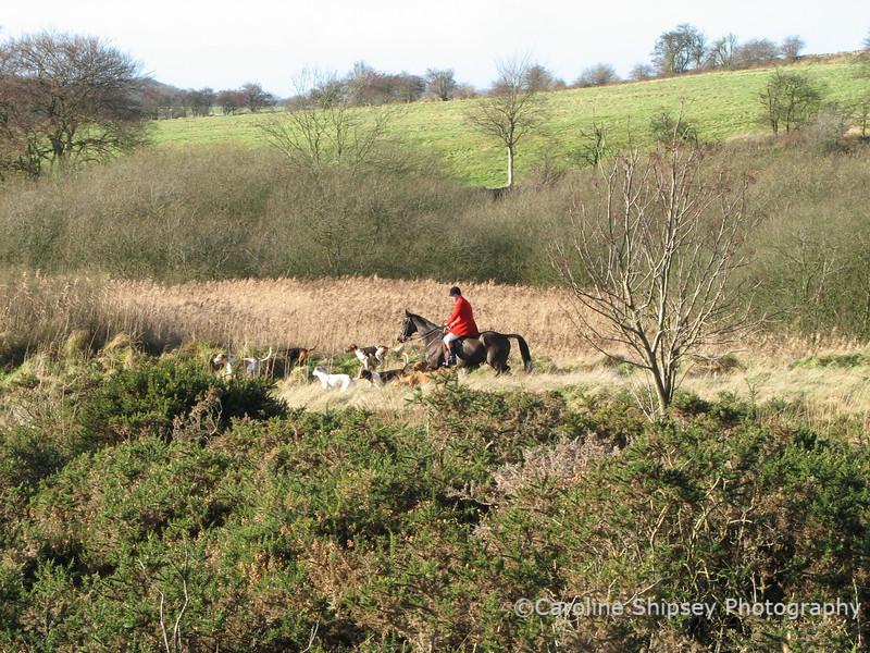 Mendip Farmers Hunt