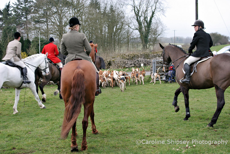 Hunters Lodge Meet 17th March 2007 Mendip Farmers Hunt