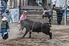 Bull riding - 4