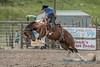 Bronc riding - 4