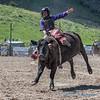 Junior cattle riding - 2