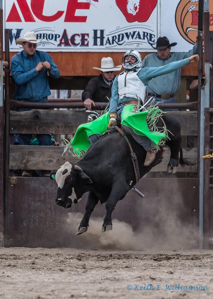 Bull riding - 1